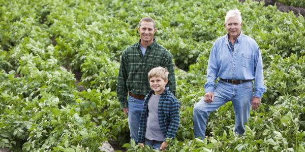 Agricultură și industrie 2